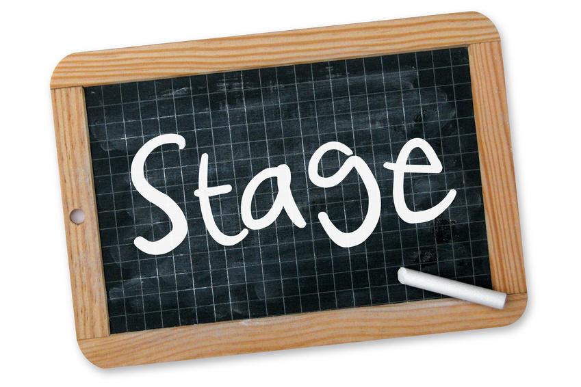 Stages Toussaint